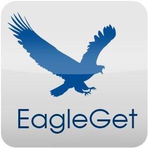 EagleGet 2.1.6.80 Crack 2021 + License Key Free Download