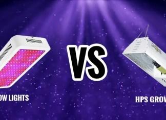 Led Grow Lights Vs. HPS Grow Lights – Details Comparison And Guide