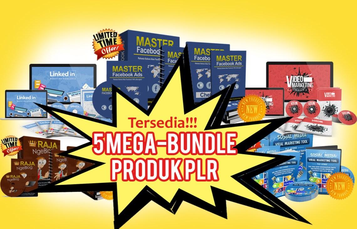 5 Mega Bundle copy
