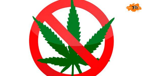 употребление марихуаны