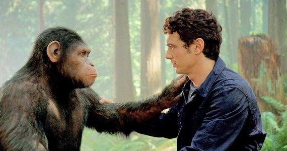 различия обезьян и людей