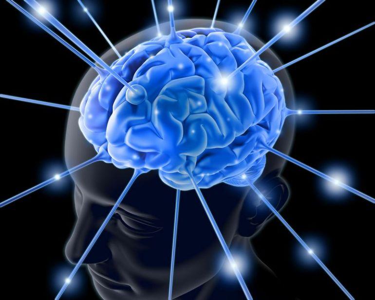 человеческий мозг создал Бог