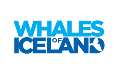 Whales of Iceland
