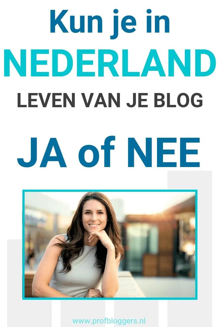 Kun je in Nederland leven van je blog? Zeker! Als je deze strategie volgt wel #bloggen #zakelijkbloggen #geldverdienenmetjeblog