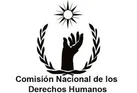 CNDH se lanza contra Gabino Cué y la CNTE.
