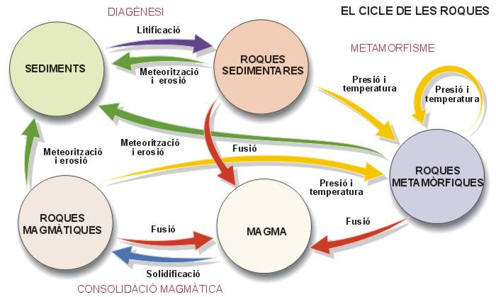 cicleroques