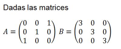 matrices ecuaciones ejercicios resueltos