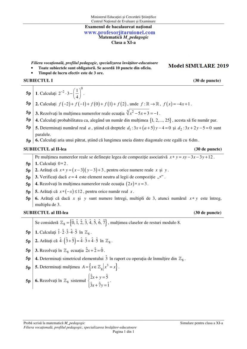 model-simulare-bac-2019-pedagogic-clasa-11