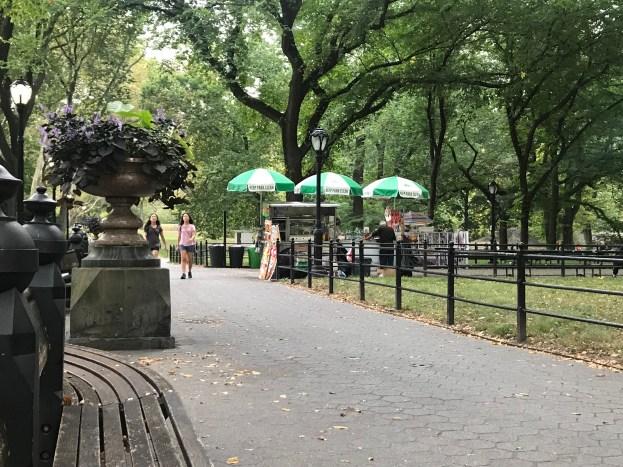 profesorjonk-nuevayork-centralpark-relatos-de-viajes_3