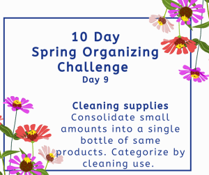 Spring organizing challenge cleaning supplies