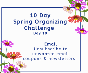 Spring organizing challenge email