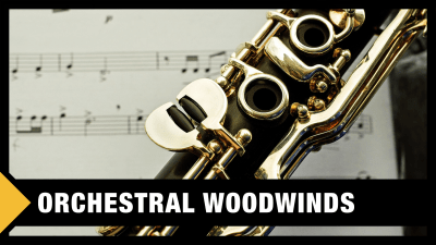 Best Orchestral Woodwinds VST Libraries in the World (2019