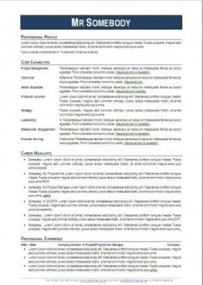 Professional CV Experts IT CV