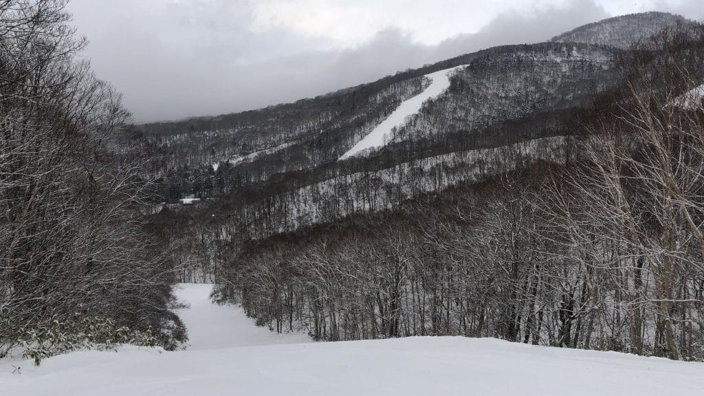 Snow Report 2020-01-20 Togakushi Ski Resort