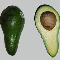 Is It Possible To Build A House Out Of Avocados?