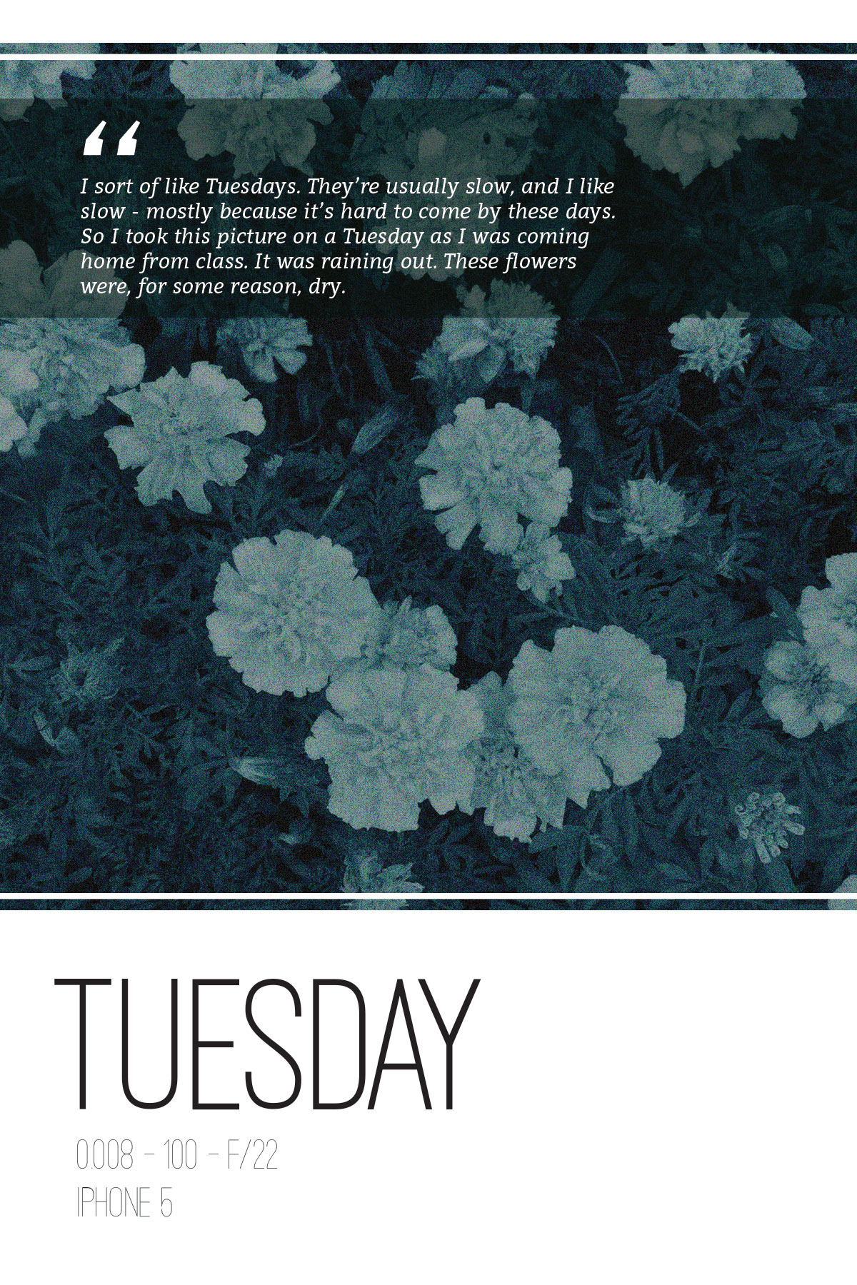 TuesdayIllust-3