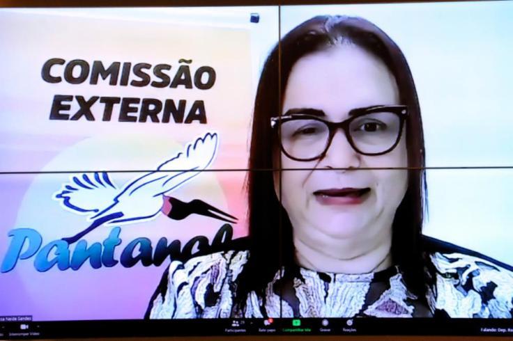 Comissão Externa Queimadas Em Biomas Brasileiros