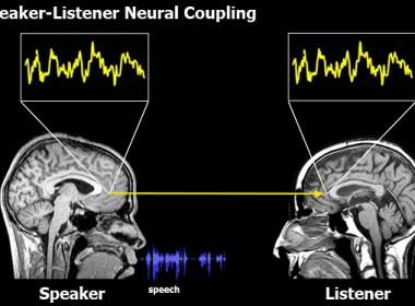 How the brain hears ideas