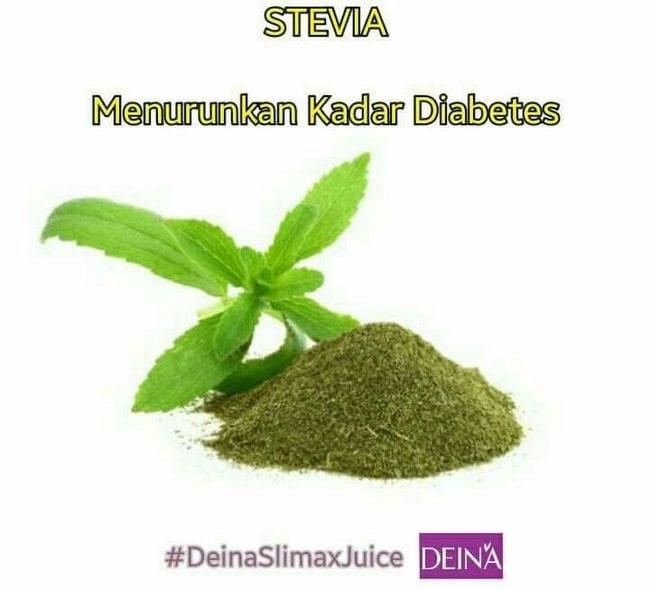 stevia pemanis elak gemuk