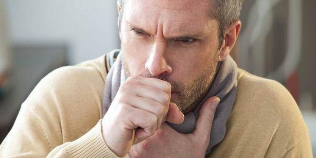 Redfar Hachimitsu madu kelulut asli ubat batuk