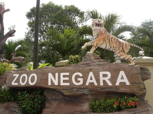 kereta sewa batu caves ke zoo negara