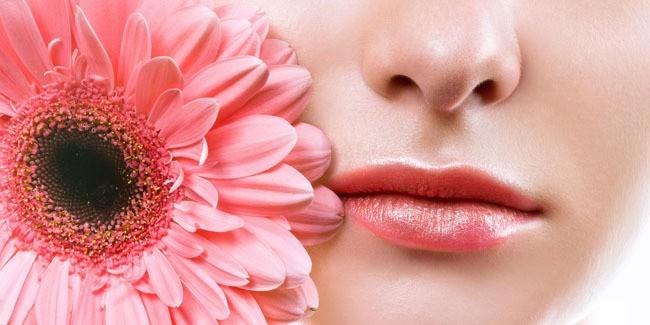 cara cantikkan bibir yang kering