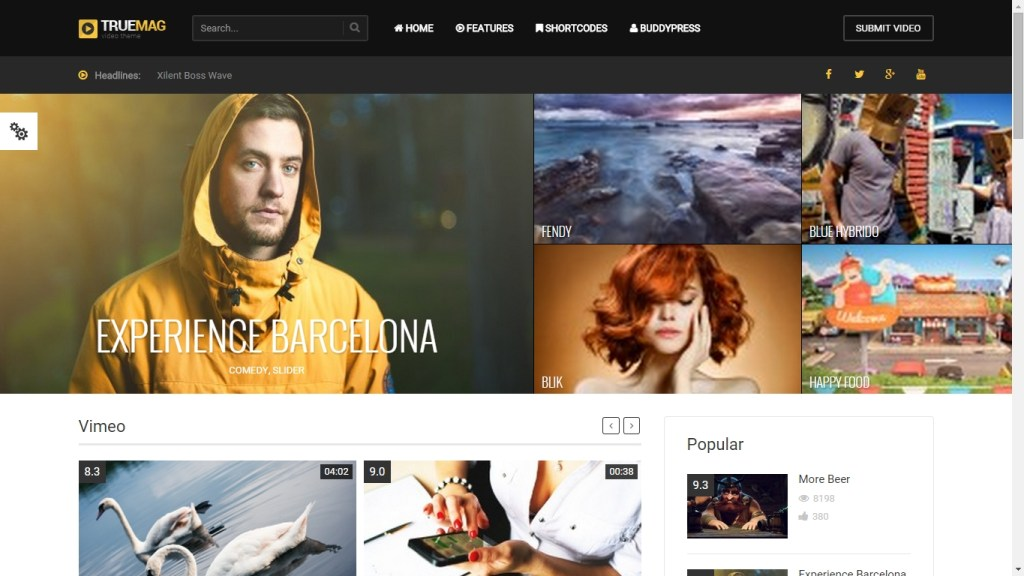 Video WordPress Theme-2015-mar-7-027