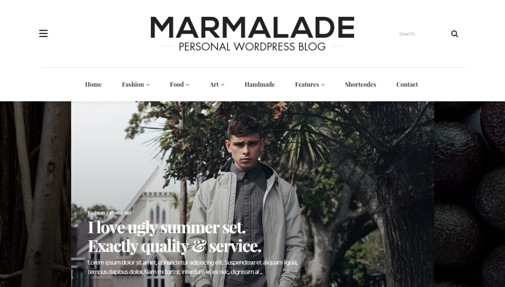 Personal blog WordPress Themes for successful and creative blogger