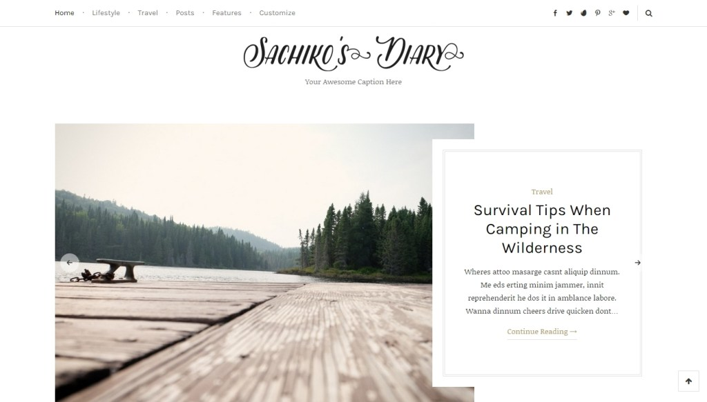 wordpress travel themes for travel bloggers-2016 (3)