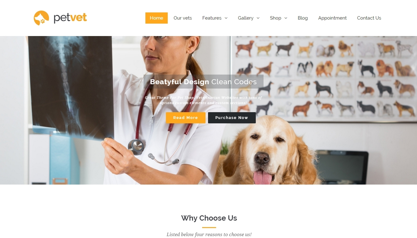 adaptive WordPress theme for veterinary business