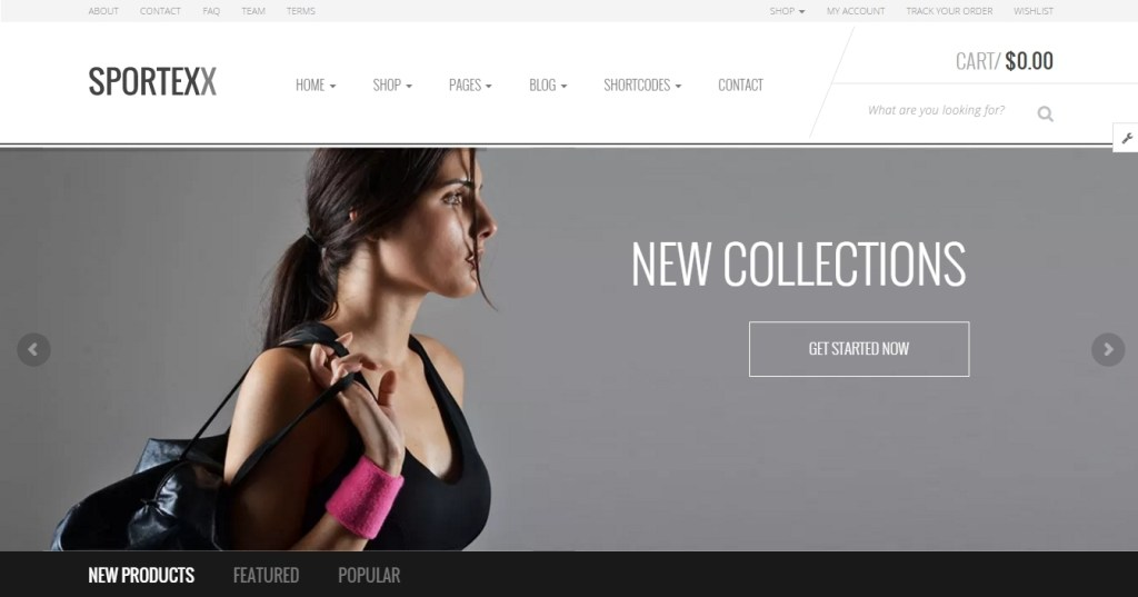 best sport shop WordPress themes of 2016 2