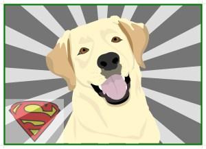 Projekt Superhund