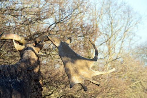Megaloceros damage, photographed in January 2020. Right antler of bull male has collapsed. Crystal Palace Dinosaurs, Crystal Palace Park, London | ProfJoeCain