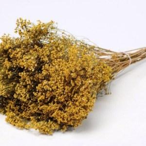Broom Bloom 150gr cor natural
