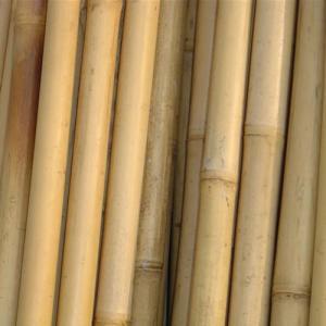 Cana de bambu natural ao metro