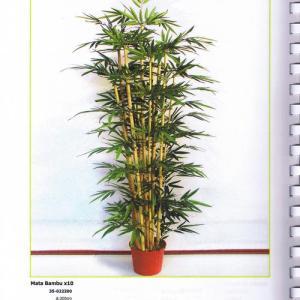Mata Bambu 10 canas 2,00mt