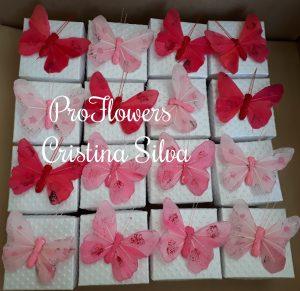 Convite caixa com foto tema borboletas