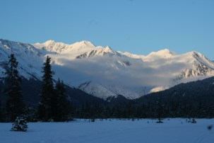 Girdwood Moose Meadow