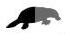 platypus half