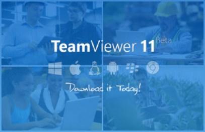 TeamViewer 15 Crack Full Version License Key
