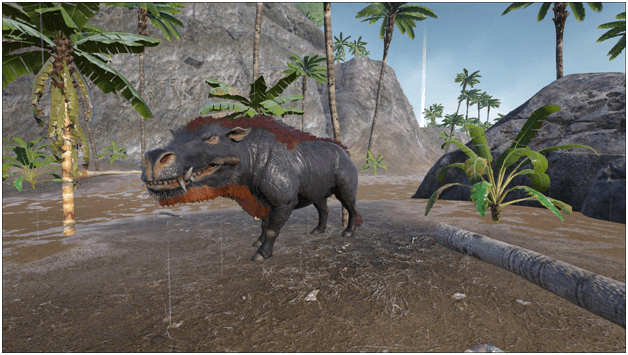 Ark Daeodon Guide Abilities Taming Food Saddle Breeding Drops Location Progametalk Survival evolved, the daeodon eats superior kibble, raw mutton, cooked lamb chop, raw prime meat, cooked prime meat, raw prime fish meat, raw meat, cooked prime. ark daeodon guide abilities taming