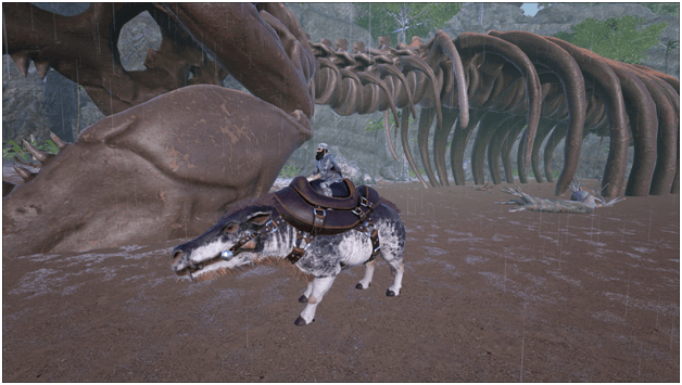 Ark Daeodon Guide Abilities Taming Food Saddle Breeding Drops Location Progametalk Survival evolved mobile, the eerie daeodon can only be found in the dungeons. ark daeodon guide abilities taming
