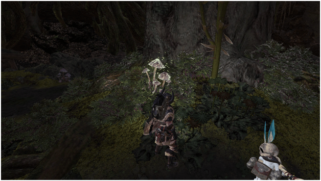 Fungal Flexin' in the Ancient Forest mhw optional quest