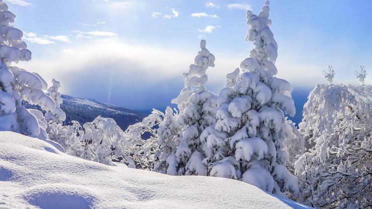 deco hiver
