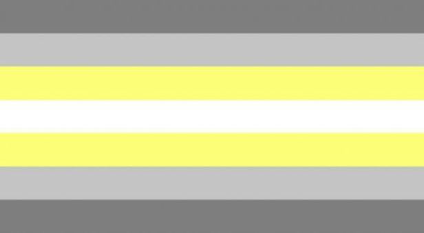 bandiera demigender