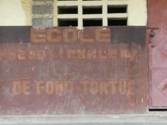 Fond Tortue (6)