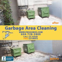 Bin cleaning / empty trash bins