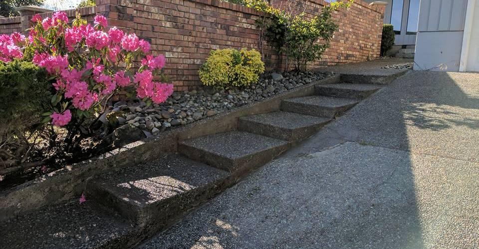 New rock gardens 2