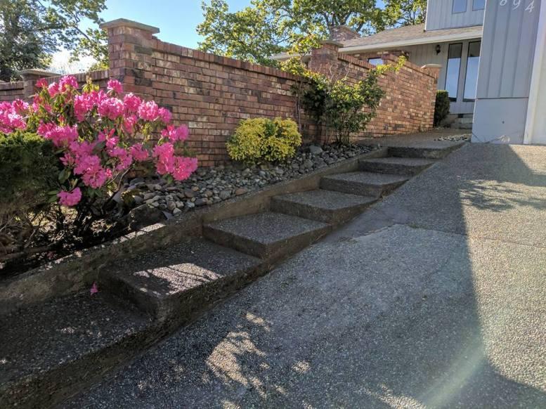 New rock gardens