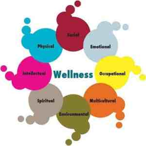 wellness programa destres